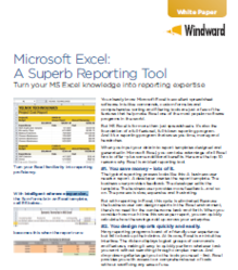 Windward White Paper On Benefits When You Design Reports in Excel