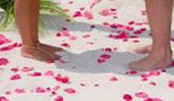 Beach Weddings, Destination Weddings, Outdoor Wedding Ceremonies, Wedding Packages, Wedding Spots, Weekday Wedding