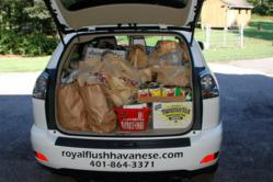 Car Filled With Donations for RICAN from Royal Flush Havanese Puppy Buyers