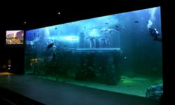 Large acrylic viewing window and underwater room
