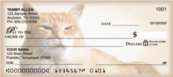 designer-checks