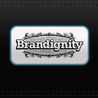 Brandignity Search Marketing Company