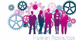 New Human Resources Online Tool