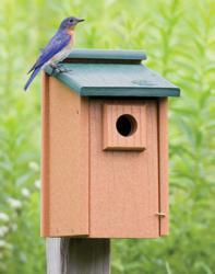 Duncraft's Eco-Friendly Bluebird House #2921