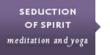 Learn more about Seduction of Spirit meditation and yoga retreat