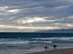 Surfers, Venice Beach by Stacey Moore