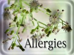Coit tips for managing your spring allergies