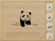 Fantastic Hand Drawing of Panda