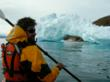 kayaking Greenland, kayak in the arctic, remote kayaking, sea kayaking Greenland, Kayak with whales, kayaking Vancouver Island