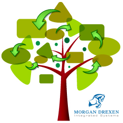 Morgan Drexen Launches Internal Software Enhancement as The Conditional Tree (TCT)