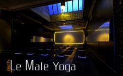 Le Male Yoga - Heat Chamber