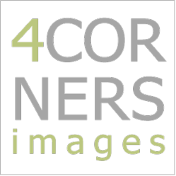 4Corners Images logo