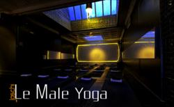 Le Male Yoga - Heat Chamber