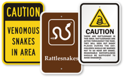 Venomous Snake Signs