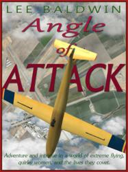 Cover art for Lee Baldwin adventure mystery novel, Angle of Attack