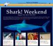 Shark! Weekend Website