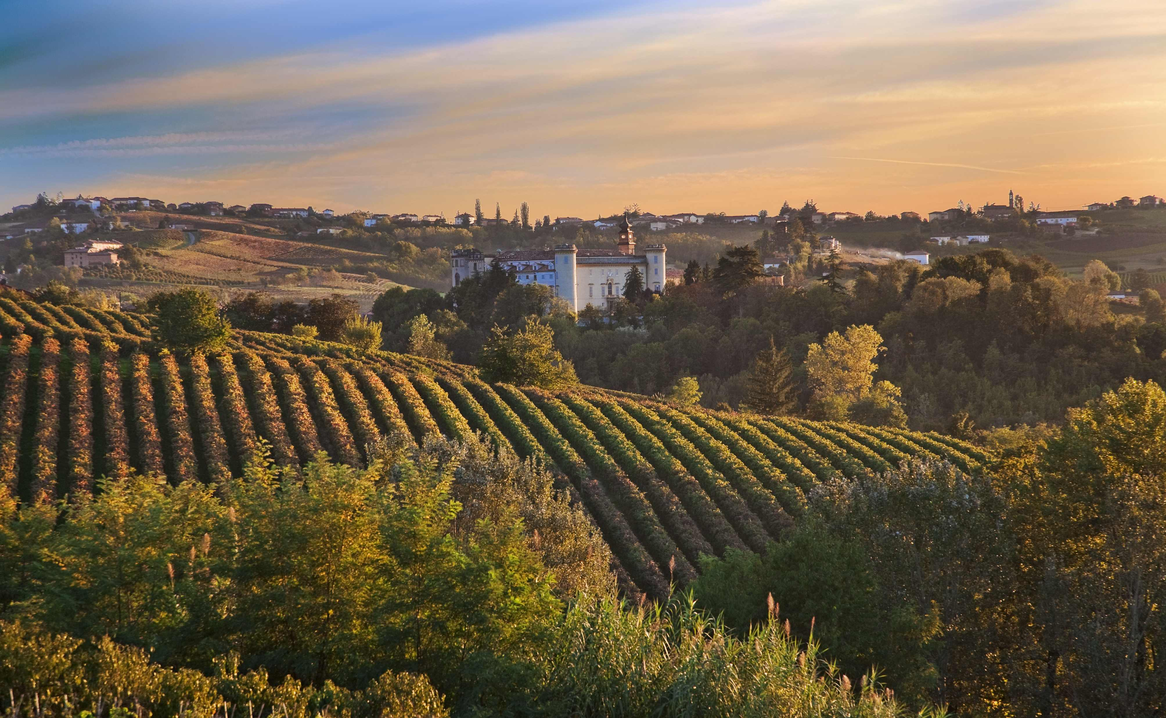 best wine tours in tuscany italy - photo#19