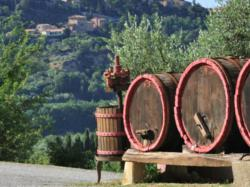 Select Italy's Unique Wine Tasting Tour