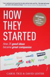Book Cover for How They Started by Carol Tice and David Lester