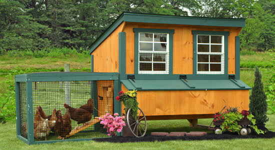 Hen house chicken coops and portable poultry coops now for Portable hen house