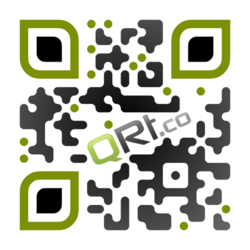 Custom QR Code