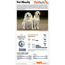 Pet Obesity Pet Facts Sheet
