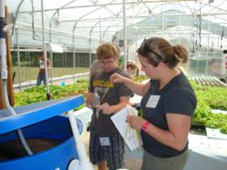 students at UWSP / Nelson and Pade, Inc aquaponics course