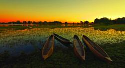 Okavango Delta, Botswana Safari Package