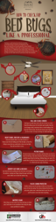 How to check for bed bugs like a professional