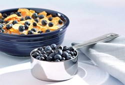 Image of Cereal and Blueberries