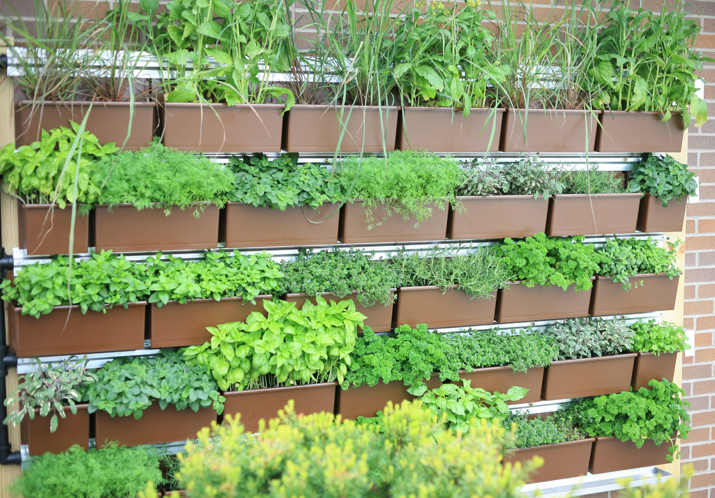 Livewall 174 The Planted Wall System Designed In Harmony