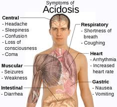 Combat Acidosis With LHN's pH Plus