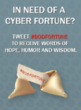 In need of a cyber fortune?