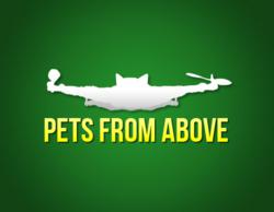CatCopter Company Pets From Above
