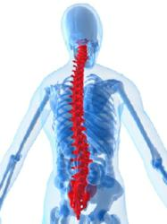 Portland car accident attorney, spinal cord injury from car accident, medical development injury lawyer