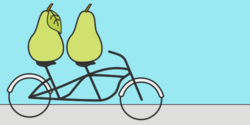 Two Pears on a Bicycle