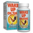 Rise N Shine LLC Supplements To Aid In Obesity Stemming From Sleep...