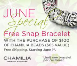 Purchase 100+ of Chamilia Beads and receive a Free Sterling Silver Chamilia Bracelet.