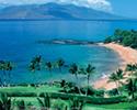 Hawaiian Destination Beach Wedding