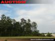 Newberry Acreage For Sale