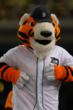 Paws - Detroit Tigers Mascot