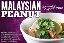 Malaysian Peanut Curry