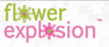 FlowerExplosion.com Expands Its Online Presence with a Listing in...