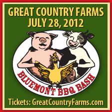 Culinary BBQ Festival Shenandoah Valley, KCBS BBQ Contest, Kids Outdoor Activities Shenandoah Valley