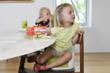 OXO Tot Booster Seat