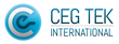CEG TEK Launches Interactive Holiday Movie Piracy Portal