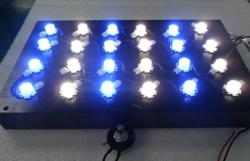 CREE LED Aquarium Light