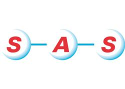 SAS Group logo