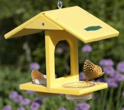 Duncraft's #4251 Eco Butterfly Feeder