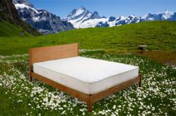 solid walnut wood bed